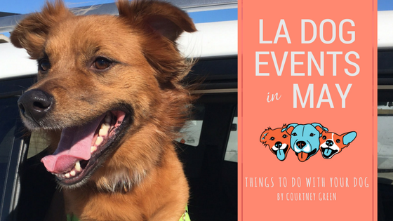 los angeles dog events may 2018