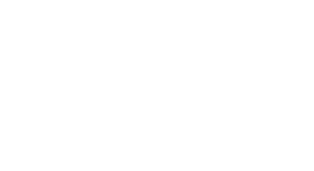 NicheTours_Logo_Reverse_sm_footer.png