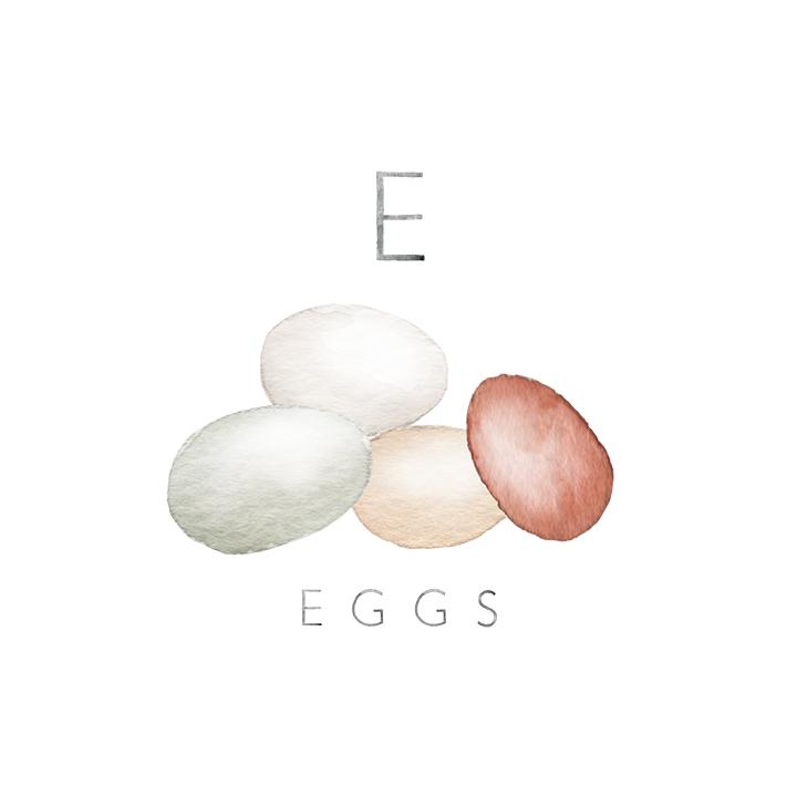 eggs copy.jpg