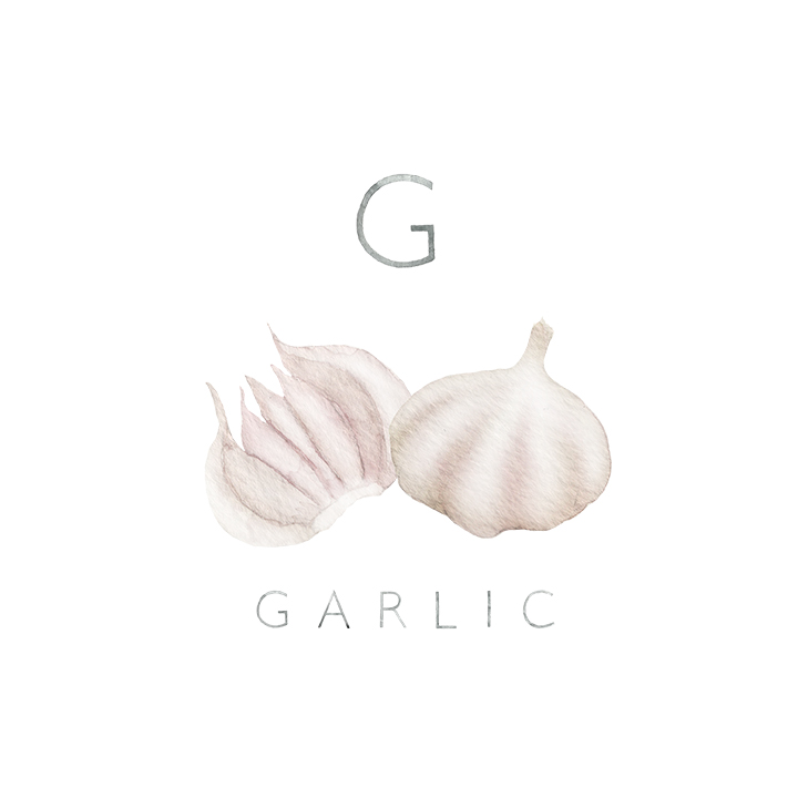 garlic copy.jpg