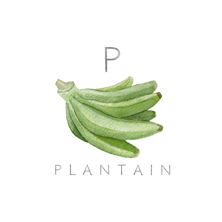 plantain copy.jpg