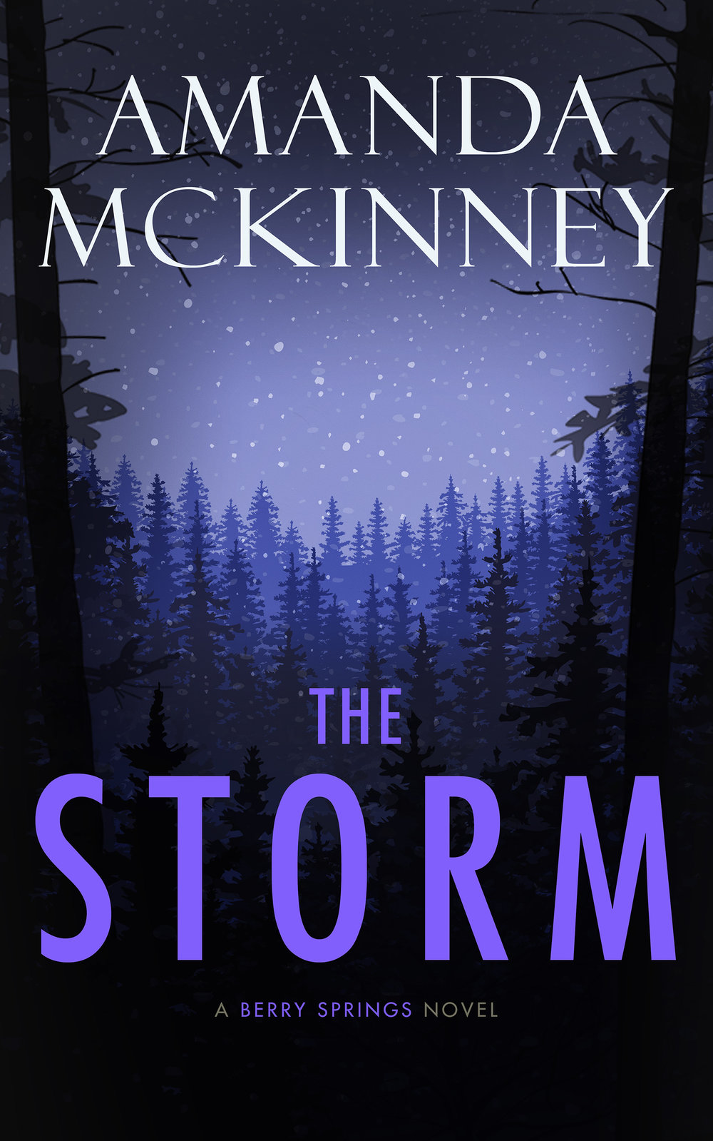The Storm - eBook small.jpg
