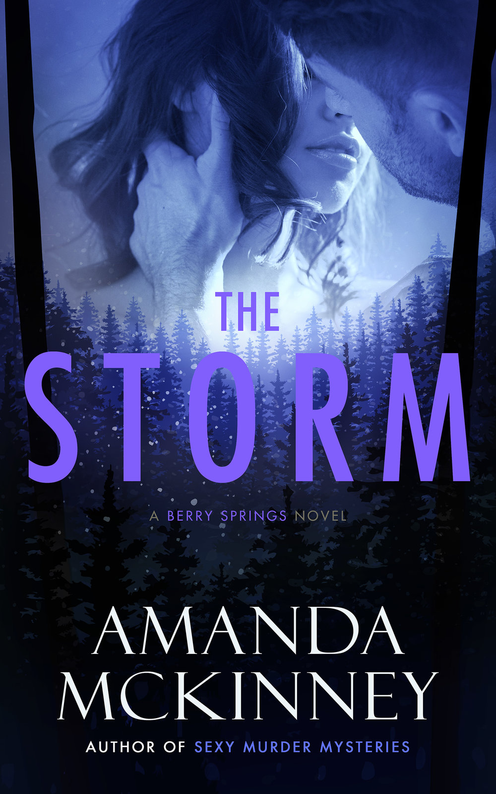 The Storm_eBook_small_updated.jpg