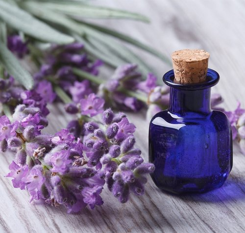 My Favorite Lavender Fragrance