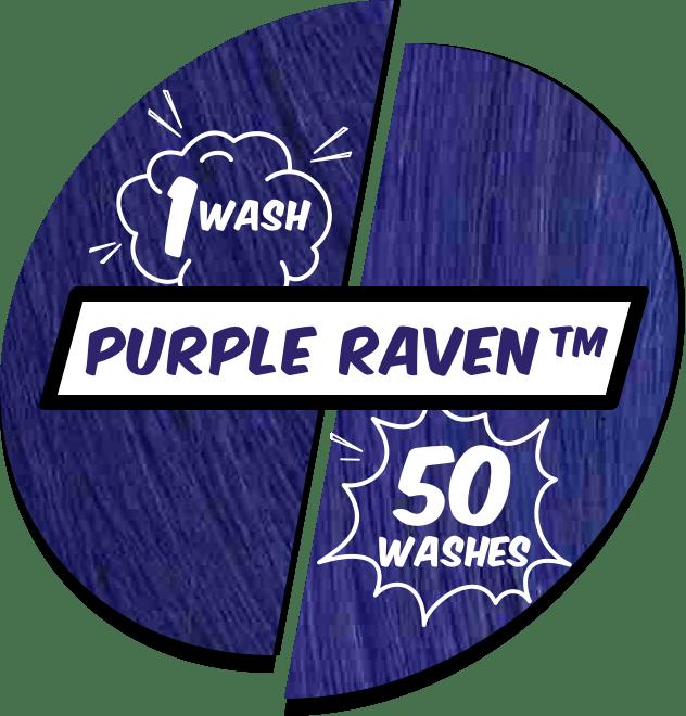 Performance-Purple-Raven@2x.png