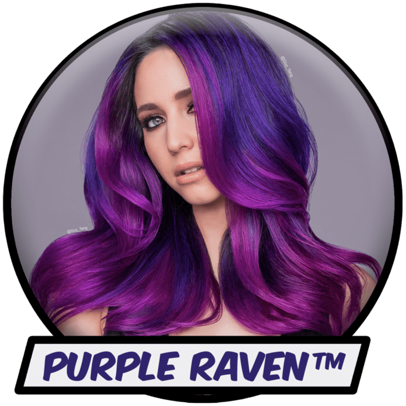hero-cta-1-purple-raven.png