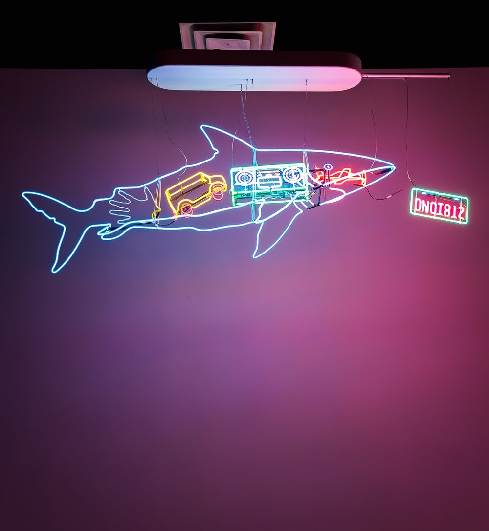 Shark-screen-1200px.jpg