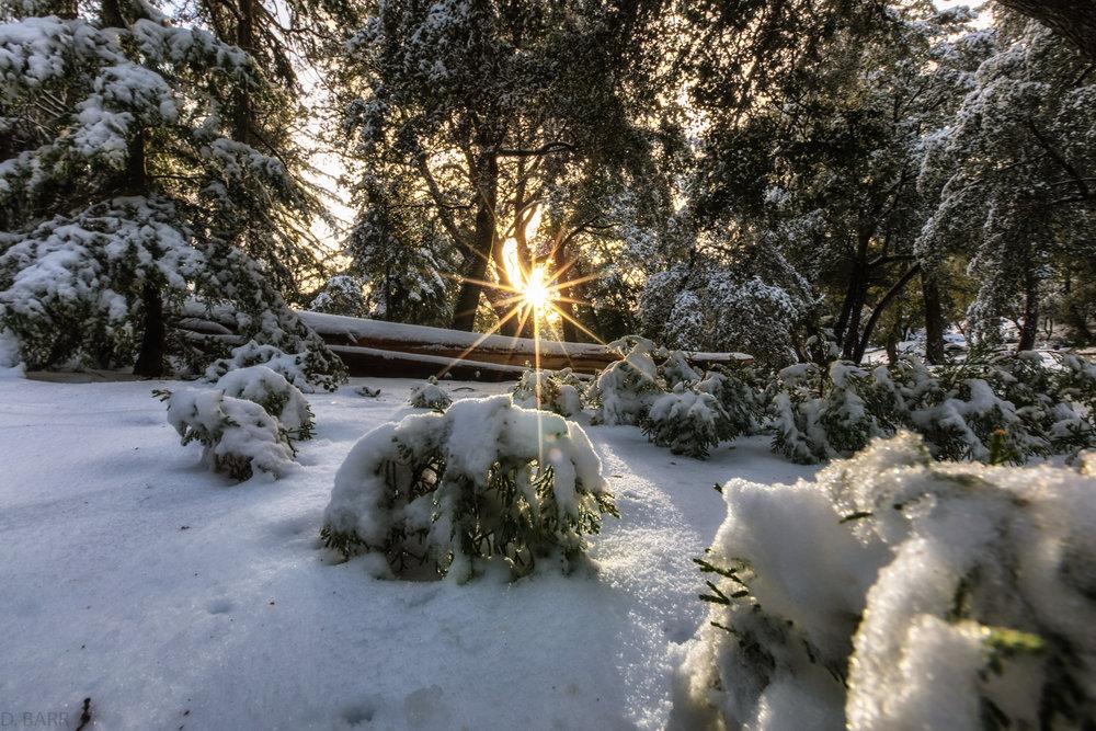 Mt. Palomar (California)