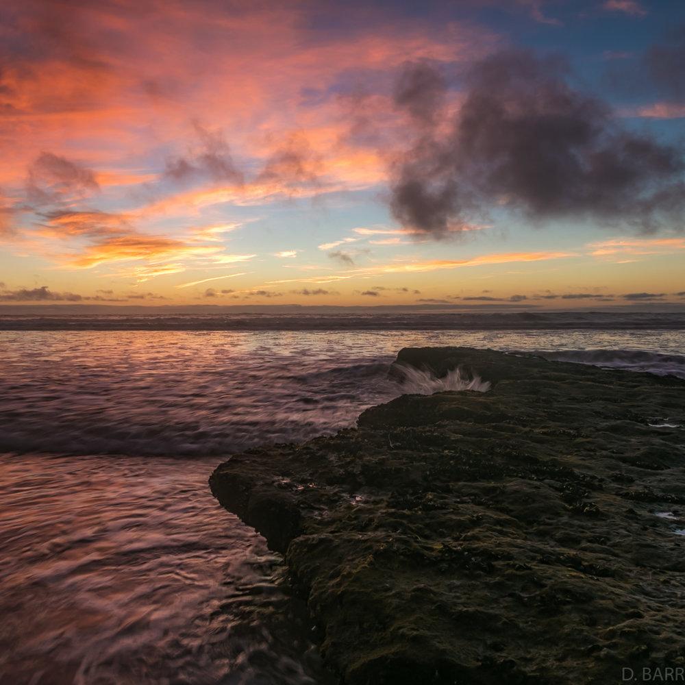 Dog Beach (Del Mar, Ca.)