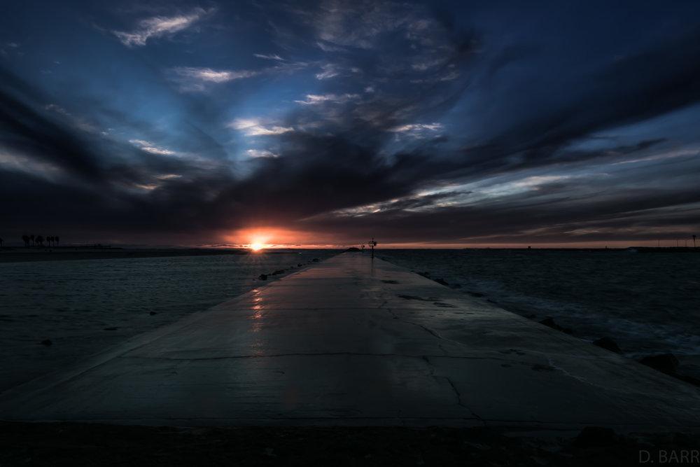 Dog Beach (Ocean Beach, Ca.)