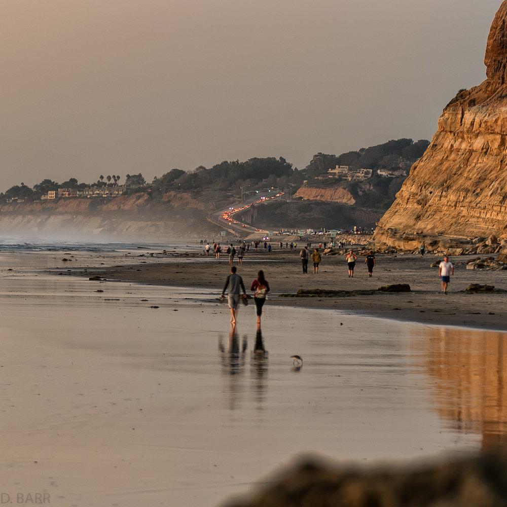 Torrey Pines State Beach, Ca.