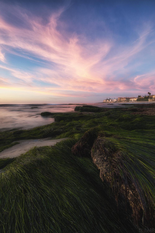 Hospitals Beach (La Jolla, Ca.)