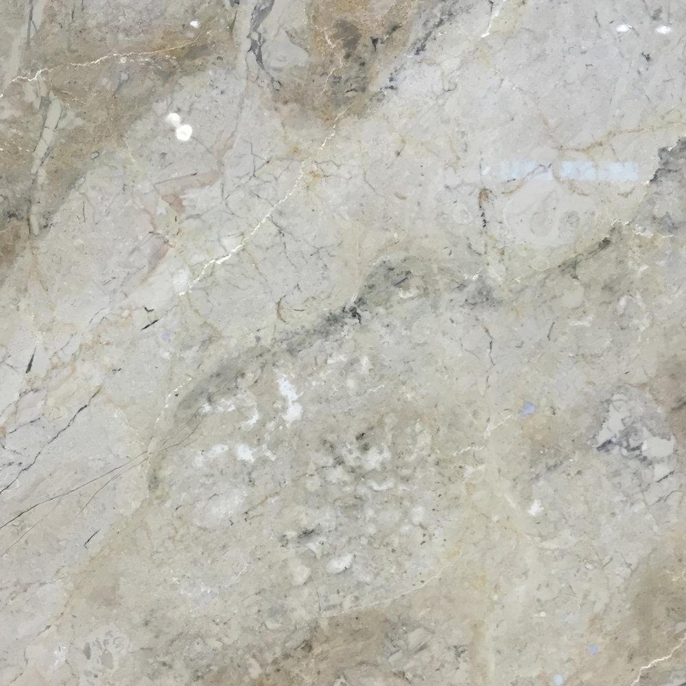 Fósil Tempisque