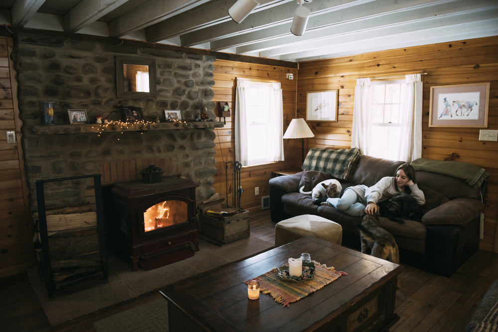 Black Bear cabin rental at Wellnesste Lodge in NY