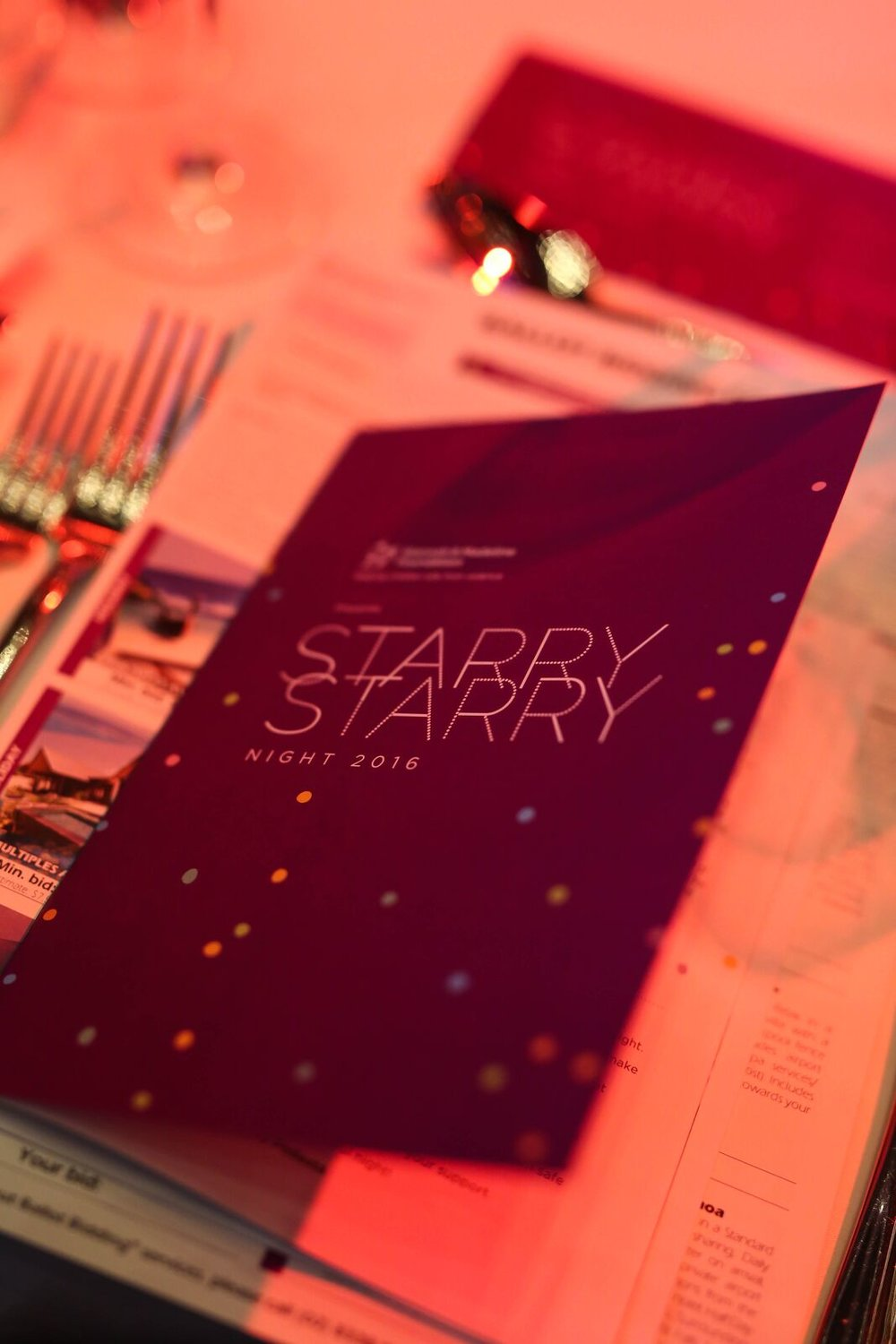 starry-starry-night-2016-program.jpg
