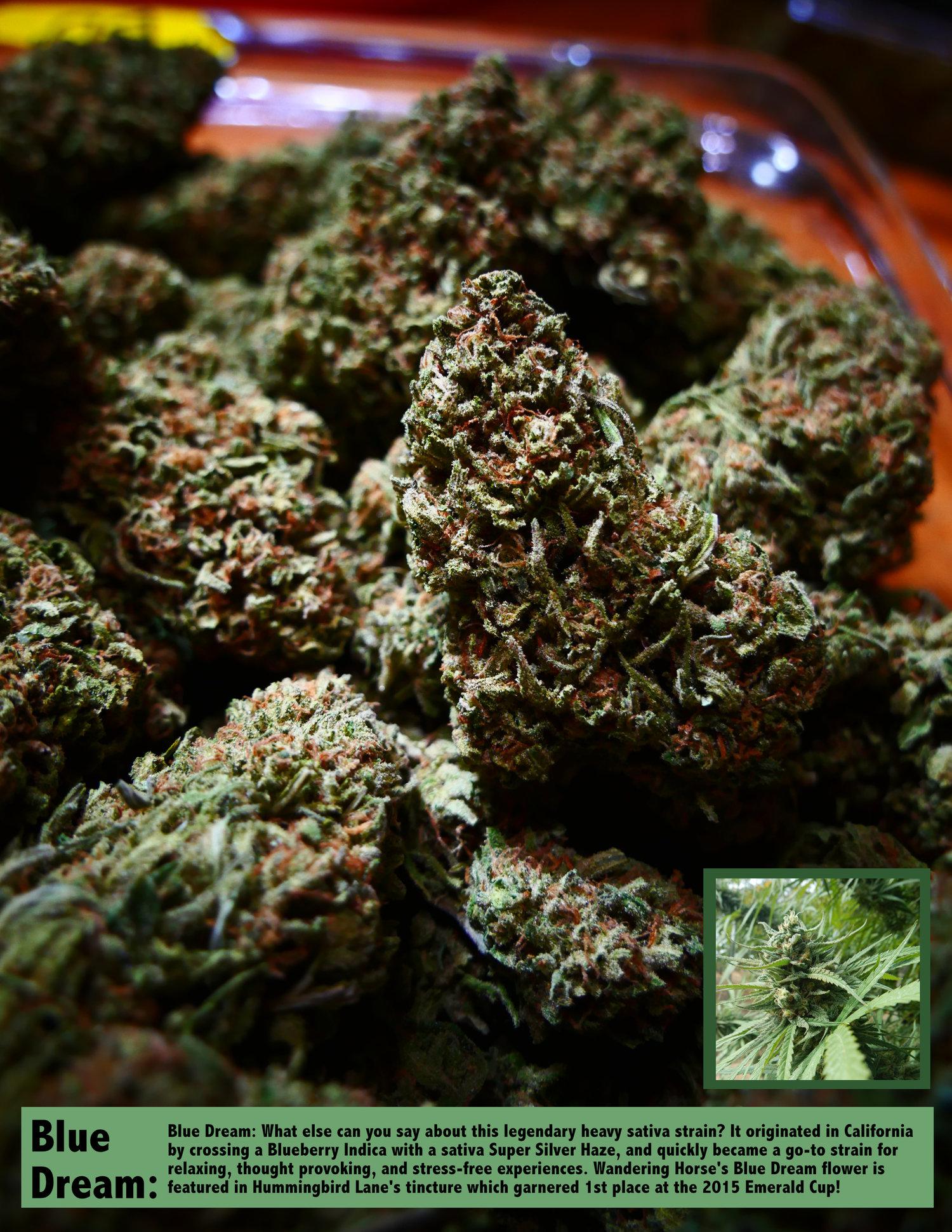 Blue Dream — California Cannabis Broker