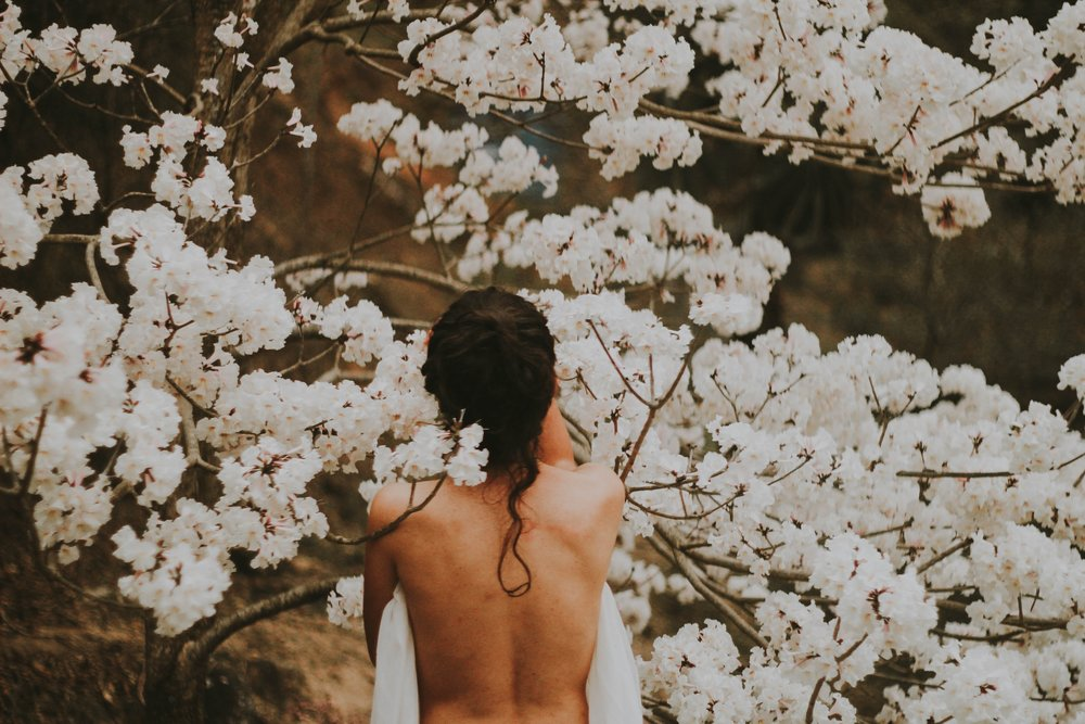 a woman with dark hair facing away from the camera stands under a tree covered in white blossoms