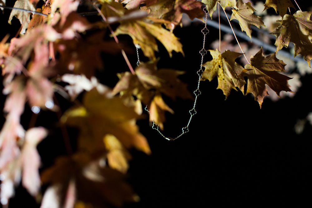 Rhinebeck Leaves-10.jpg