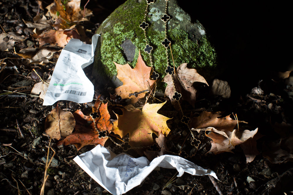 Rhinebeck Leaves-12.jpg