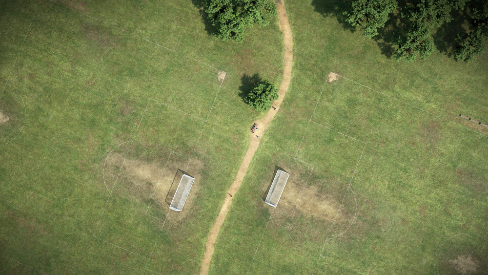 Grass Field Final.jpg