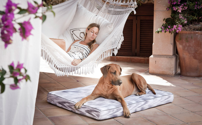 Mallorca, Majorca, ikat, textile, interior, dog, bed