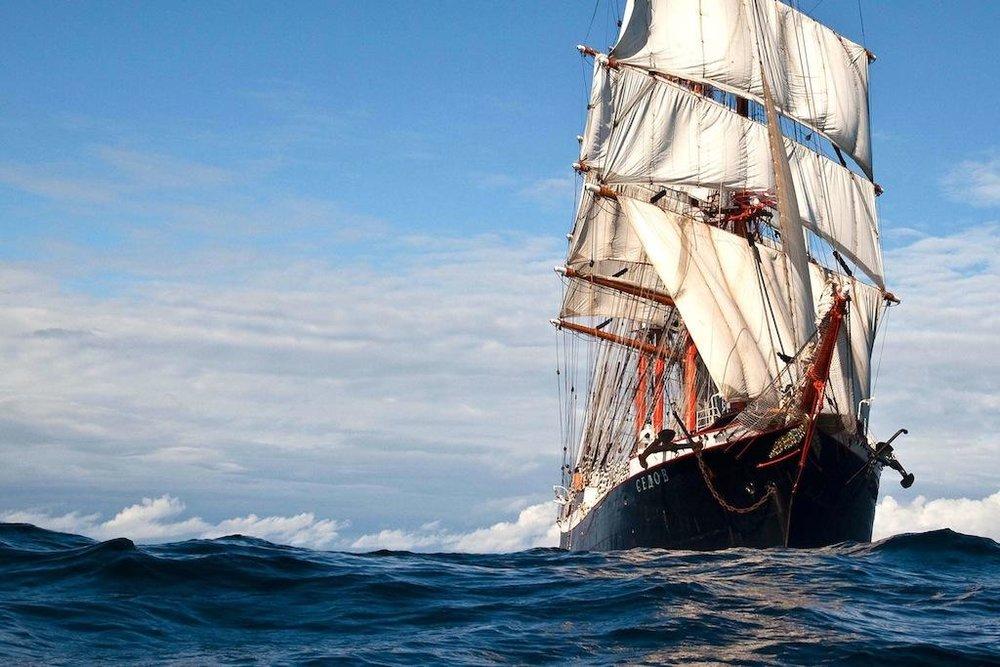 Sedov, ship, Palma, Mallorca, Palma de Mallorca, news, event, training, history