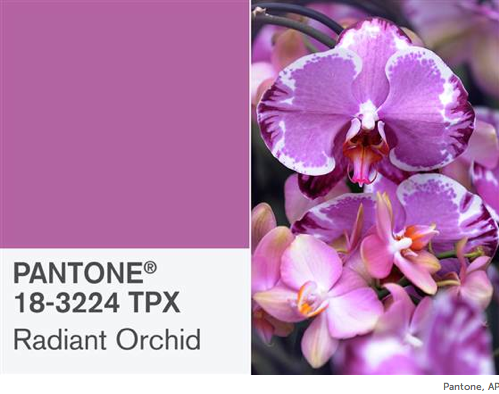 Pantone announced The Official Colour of the Year for 2014
