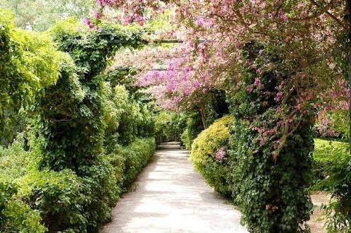 Experience Mallorca - Jardines de Alfabia