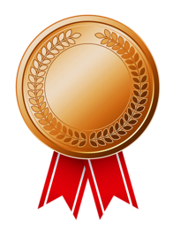 Bronze_Medal_(CCW_Awards).png