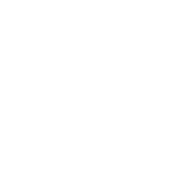 PUDDLESTOMPERS™