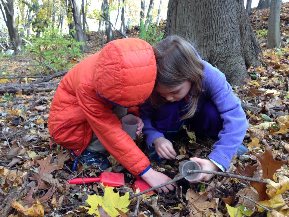 looking under leaves.jpg