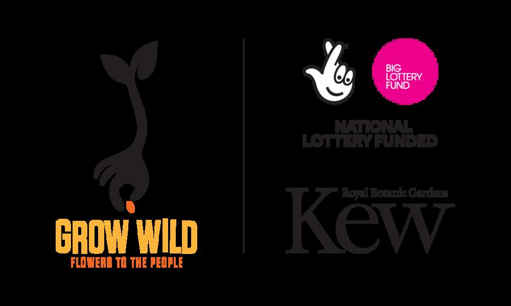 GrowWild_Kew_NLF_Logos_LockUp_Vertical_LightBG.png