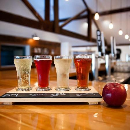 Bad Seed Cidery - HIGHLAND, NYHere at Bad Seed, we seek to advance the craft cider industry through mixing old and new cider techniques and craft beer influences. Our ciders are made from 100% fresh pressed apples grown by us on a 6th generation family farm, and we are the first American company to put a truly dry cider into a can.Bad Seed generously provides hard cider for artists performing at Levon Helm Studios.
