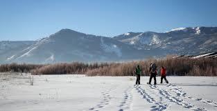 Snowshoe Tour of Swaner Preserve