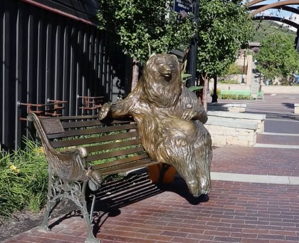 Franz-the-Bear.jpg