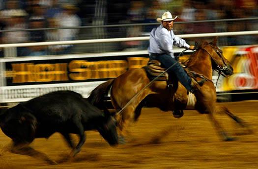 oakley+rodeo+image.jpeg