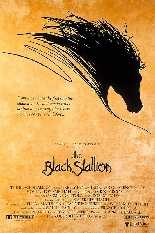 TheBlackStallion.jpg