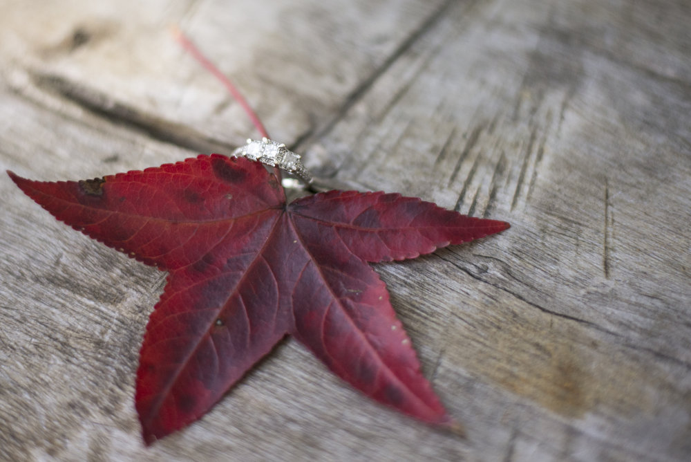 Engagement Ring Fall Leaf