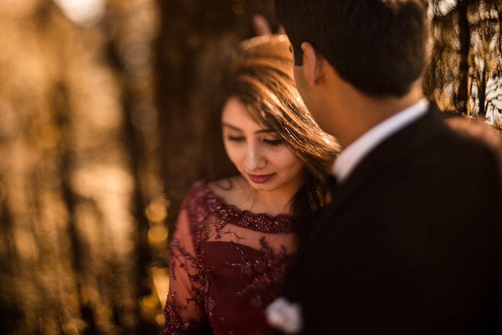 Shivam & Kavya Pre Wedding-234.jpg