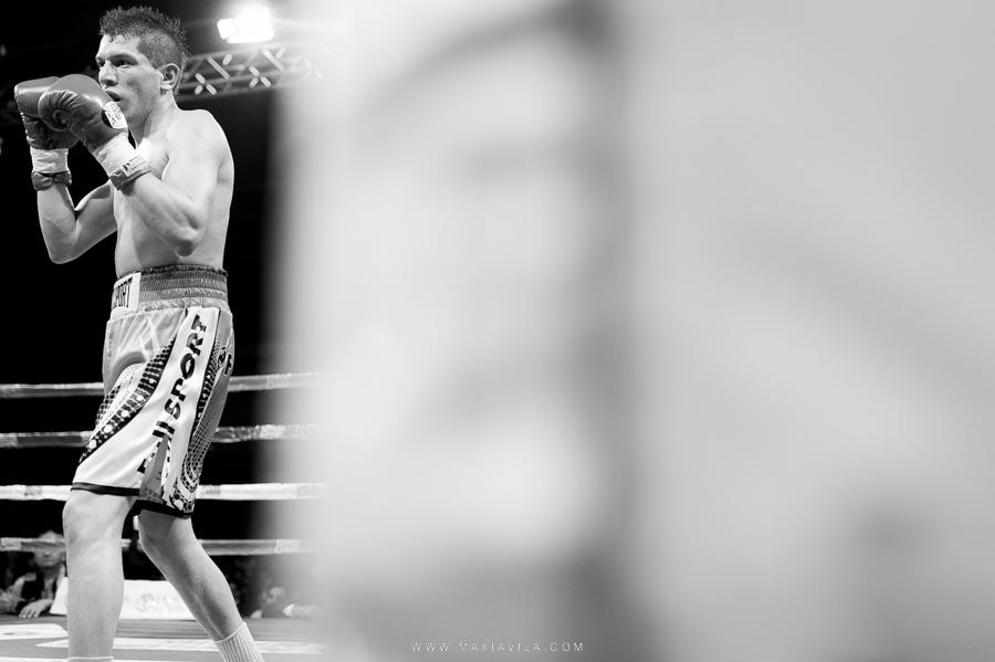 boxeo en cordoba41