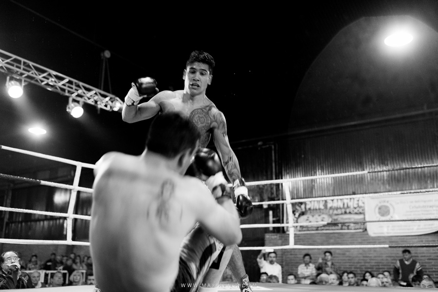 boxeo, fotografo de box, pantera suarez, guillermo la pantera suarez, 12