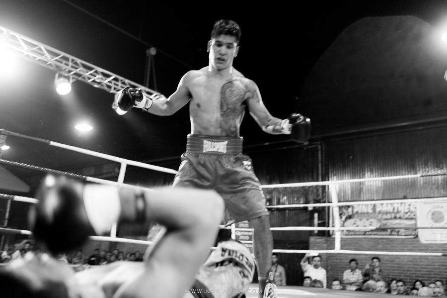 boxeo, fotografo de box, pantera suarez, guillermo la pantera suarez, 13