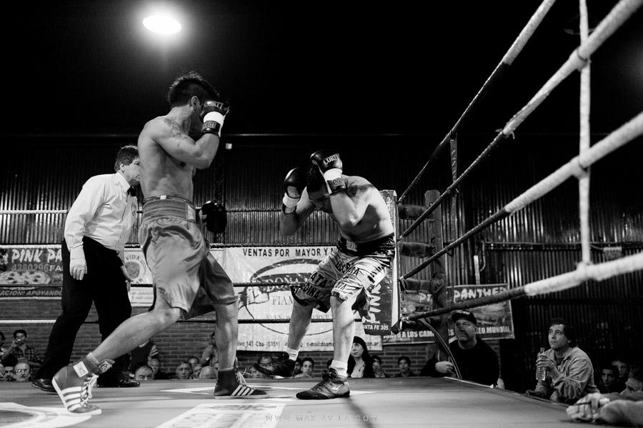 boxeo, fotografo de box, pantera suarez, guillermo la pantera suarez, 3