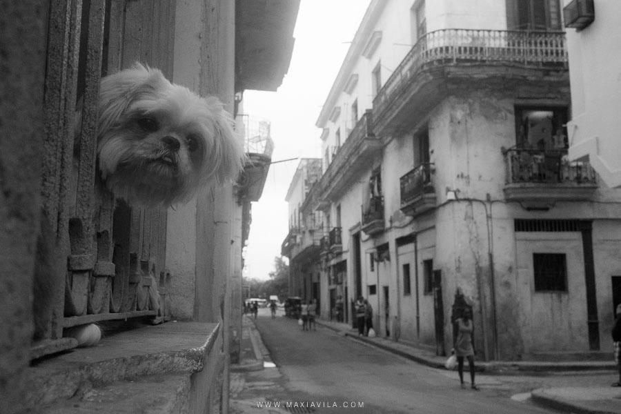 cuba-viaje-fotografia--40