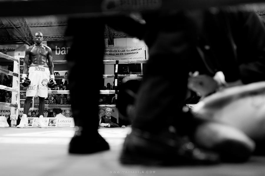 fotografia de boxeo21
