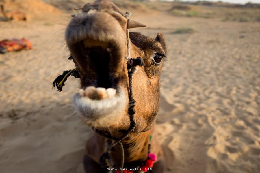 fotografo de bodas y viajes por el mundo 112