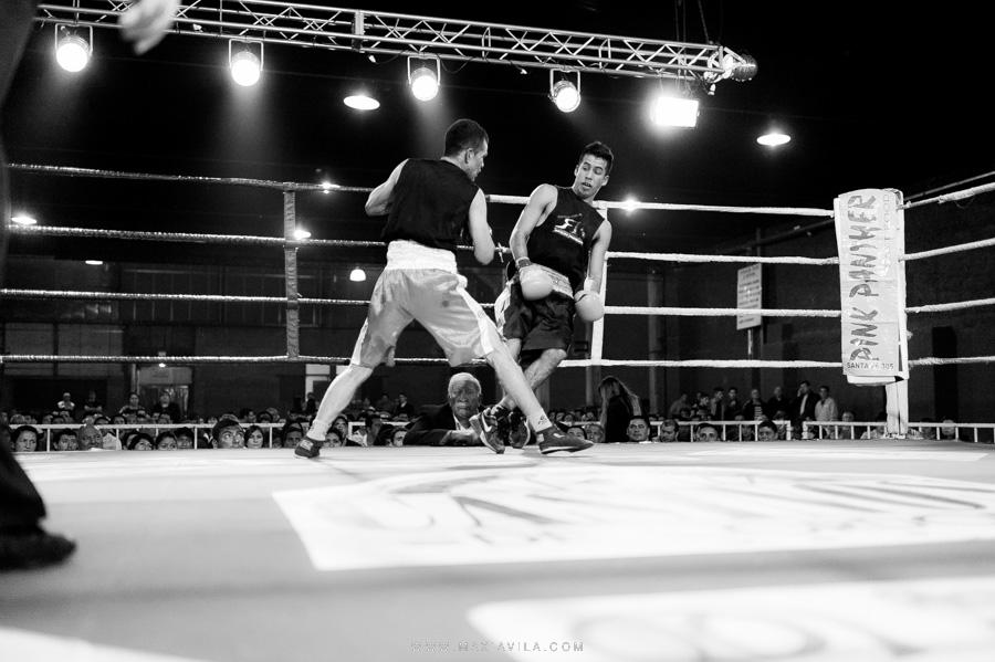 fotografo de boxeo, boxeo, boxeo en el estadio del centro, boxeo profesional en cordoba fotos63