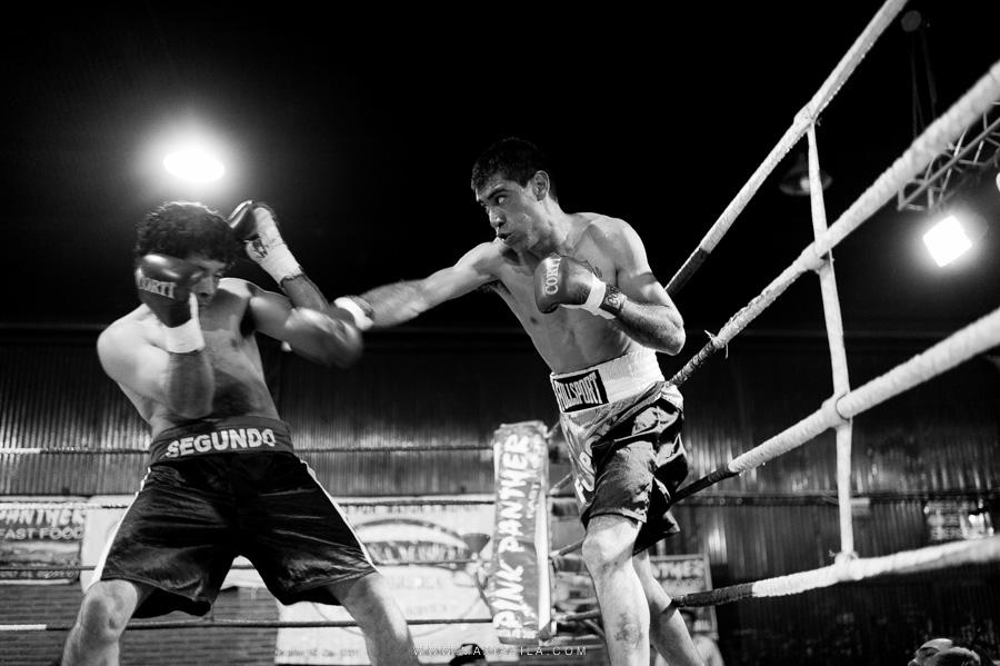 fotografo de boxeo, boxeo, boxeo en el estadio del centro, boxeo profesional en cordoba fotos76
