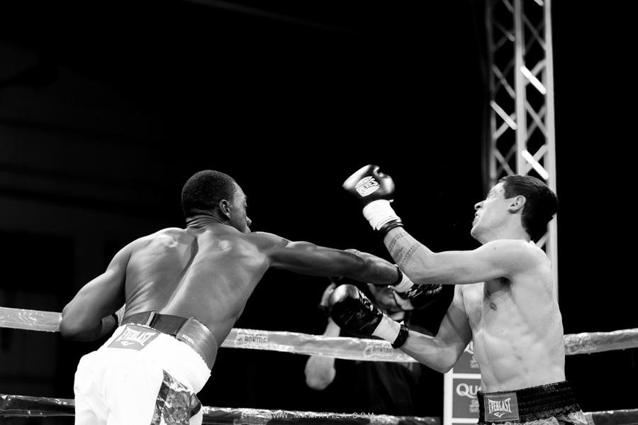 fotografo de boxeo14