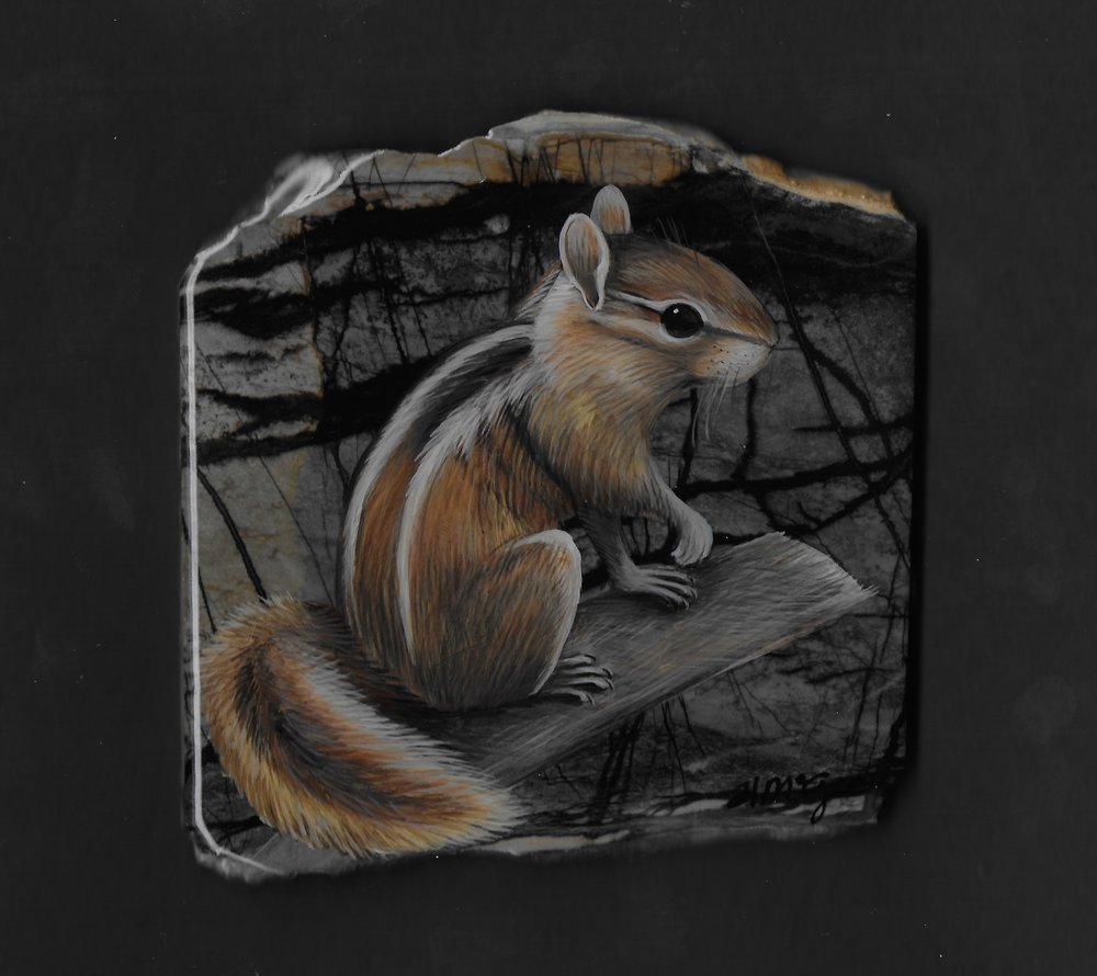 Chipmunk / Picasso Stone Marble